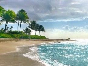 Kauai Island-Hawaii