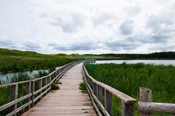 cavendish-beach-prince-edward-island