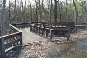 dog-friendly-parks-pittsburgh