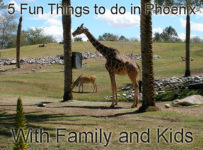 5 Fun Things to Do in Phoenix With Family and Kids