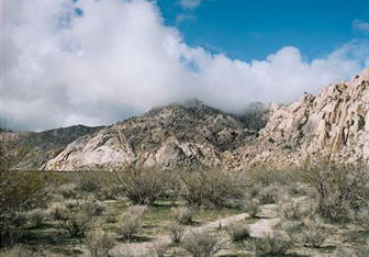Mojave National Preserve – A Refreshing Weekend Destination
