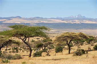 Holidaying in Kenya – Safari and What Else?