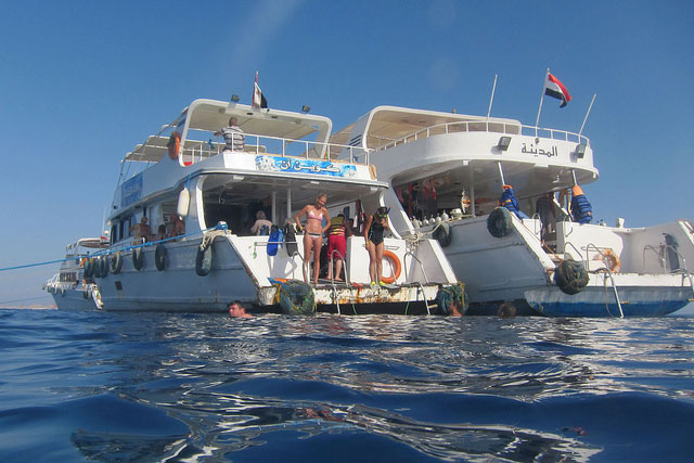 Diving in Sharm el-Sheikh, Egypt