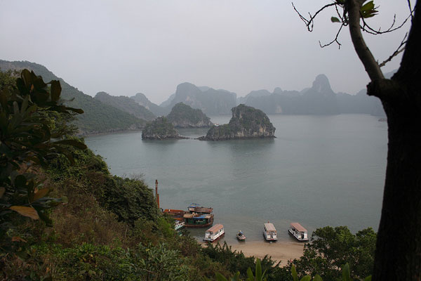 Top 5 Things to Do in Vietnam